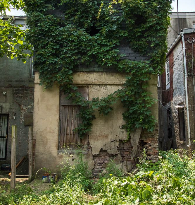 Baltimore Ecosystem Study (2014-2015)